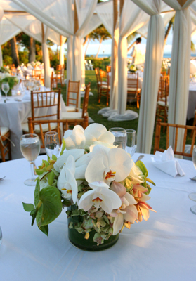 white orchid table maui wedding