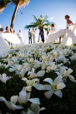 white orchid petal path