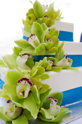 wedding cake staked with green orchids and blue ribbon