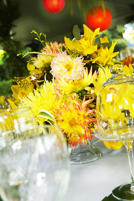 bright yellow flowers, yellow orchids