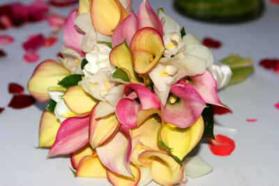 mix of calla lilies yellow and pink