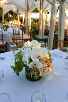 Olowalu dinner set up: Blue Sky Weddings