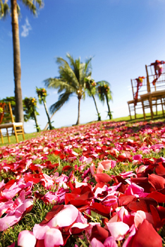 Maui Wedding rose petal path