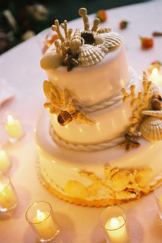 Seashell wedding cake: Maui