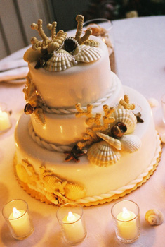 shell cake with rope