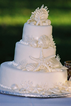 white seashell wedding cake